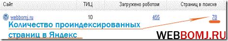 проверить индексацию сайта pr-cy